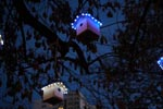 Lichtinstallation zu Artenschutz im Alltag: NABU-Baum am Hackeschen Markt in Berlin