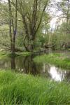 Tegeler Fließtal
