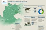 Grafik 15 Jahre Wölfe in Deutschland