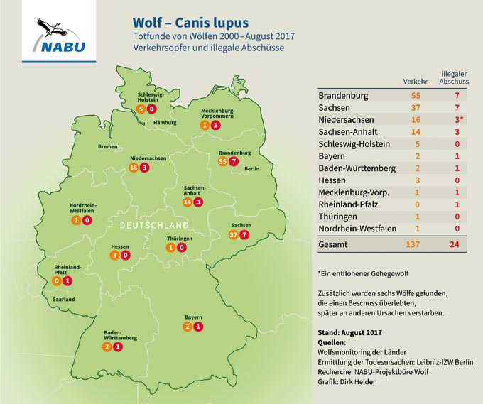 Totfunde von Wölfen in Deutschland
