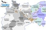 Mitteleuropäische Tieflandpopulation