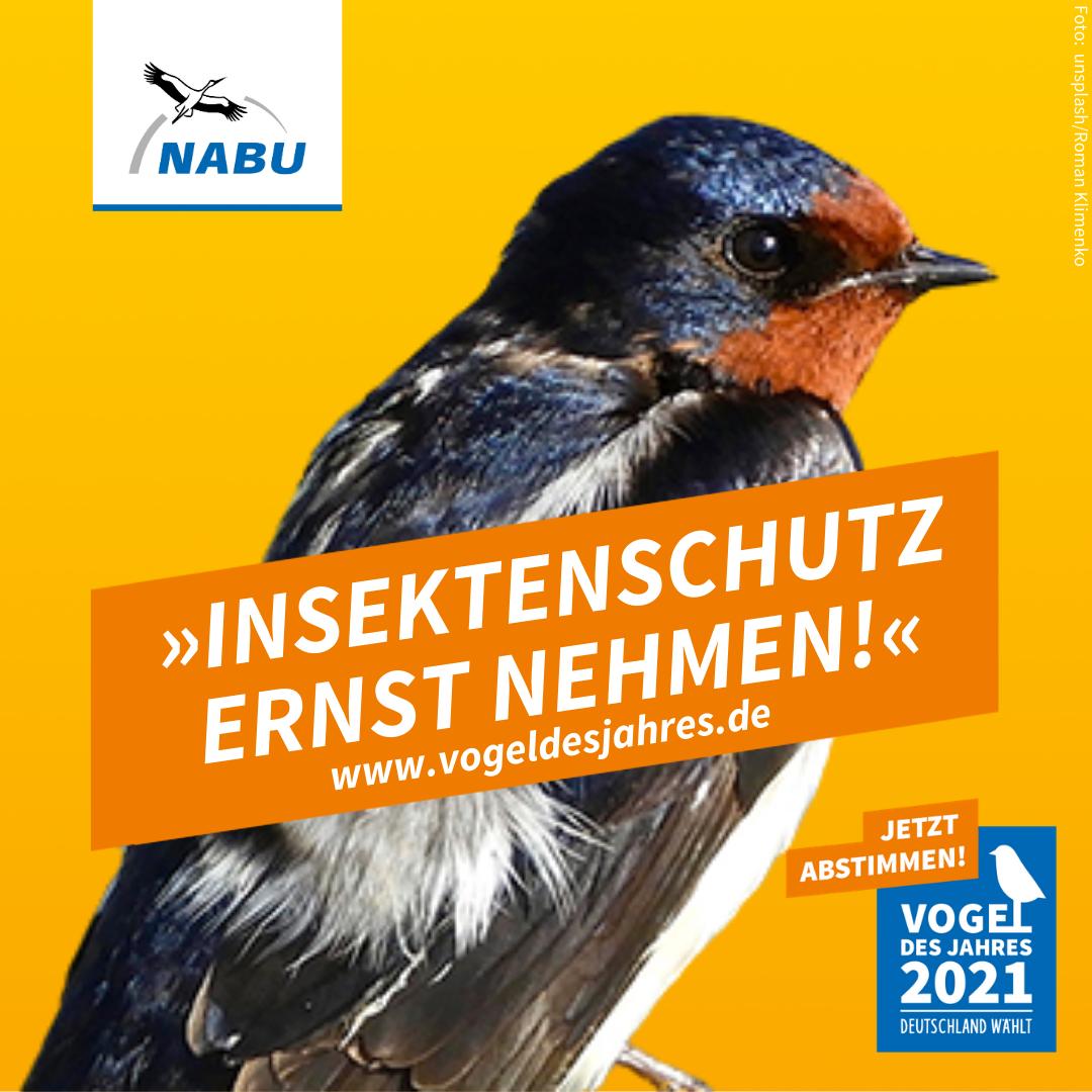 https://www.nabu.de/downloads/vdj/bilder-vogelwahl2021/Wahlplakate_Rauchschwalbe.zip