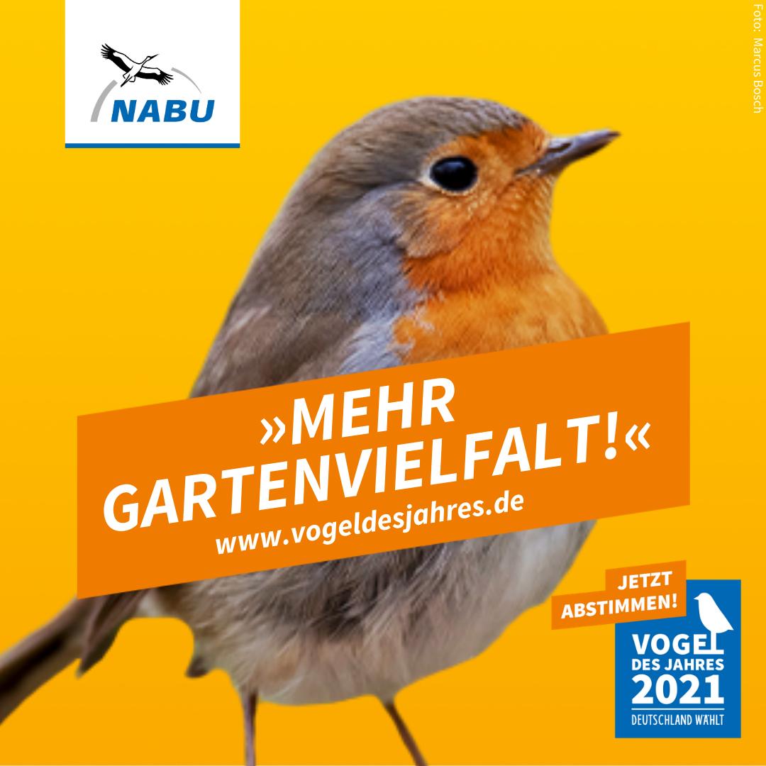 https://www.nabu.de/downloads/vdj/bilder-vogelwahl2021/Wahlplakate_Rotkehlchen.zip