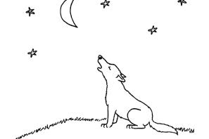 ausmalbild wolfsfamilie   kinder ausmalbilder