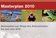 NABU legt Maßnahmenkatalog zum Erhalt der biologischen Vielfalt vor