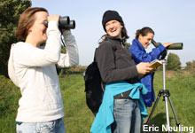 Erste Ergebnisse des Birdwatch 2010