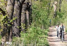 NABU-Gutachten zur Zukunft des Landeswaldes in NRW