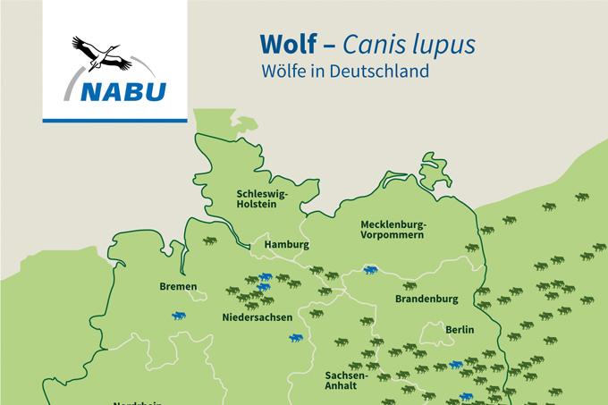 Wölfe In Mv Karte