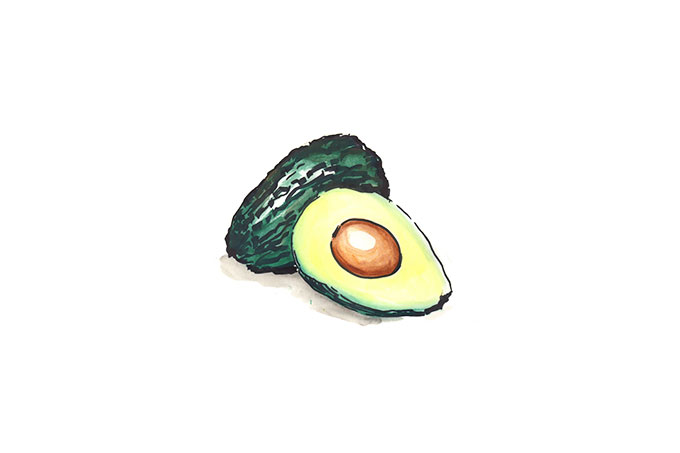 Illustration einer Avocado.