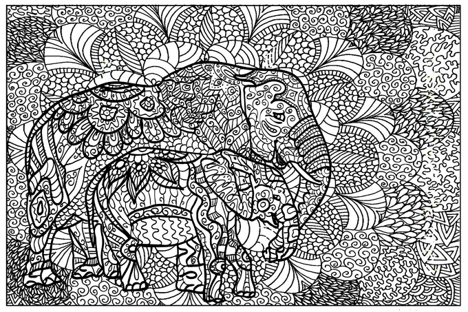 Zendoodle For Web