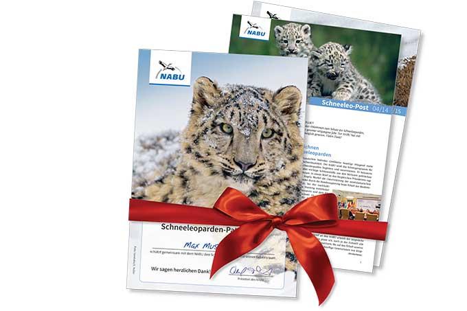 Materialpaket Geschenkpatenschaften