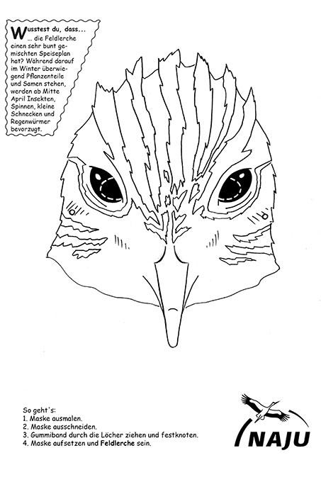 Tiermasken Basteln So Wirst Du Zum Schmetterling Nabu