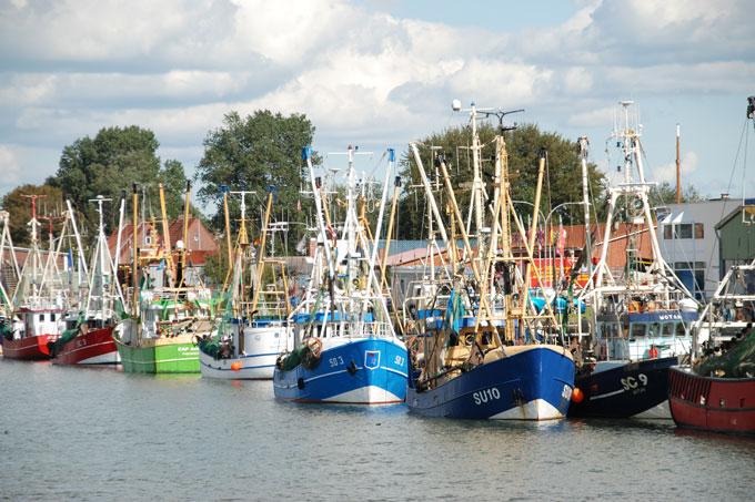 Fischkutter - Foto: NABU/Kim Detloff