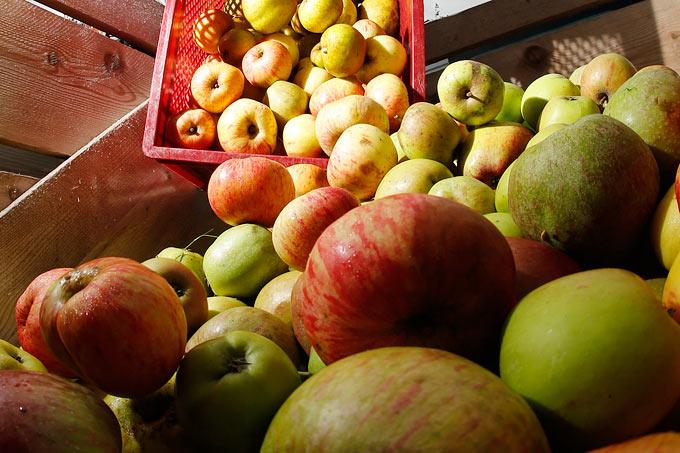 Saft Aus Eigenem Obst Bundesweite Mostereien übersicht Nabu