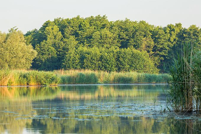 Viele Gewässer sind schwer mit Quecksilber belastet - Foto: NABU/Klemens Karkow