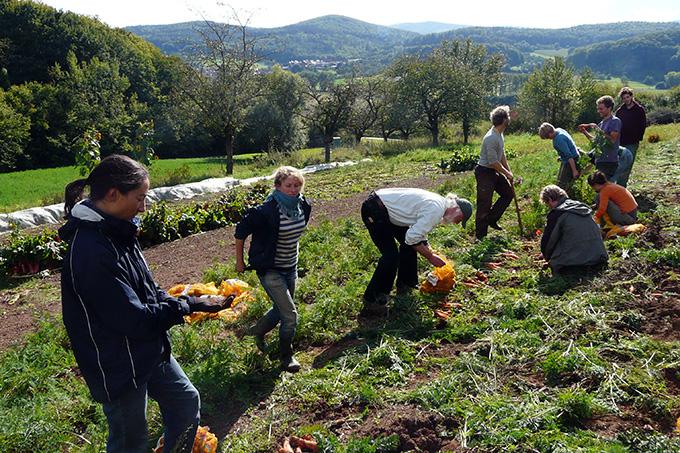 Lieblings Solidarische Landwirtschaft in Deutschland - NABU #OR_47