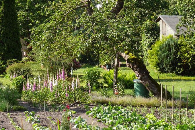 Exceptionnel Klimaangepasstes Gärtnern