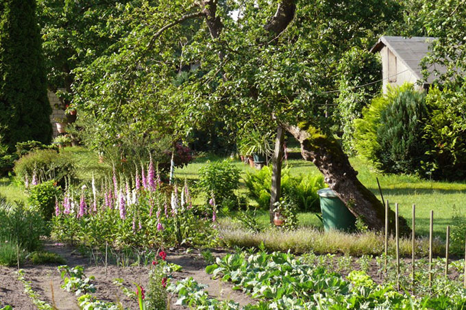 Grundlagen Naturgarten Nabu