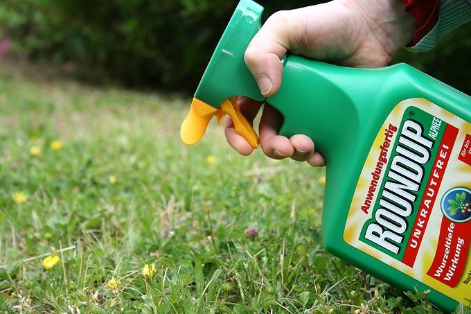 Wird bedenkenlos in zahlreichen Haus- und Kleingärten verwendet: Das für Mensch und Natur risikoreiche Glyphosat. - Foto: Eric Neuling