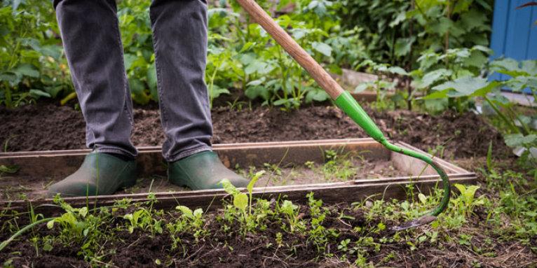 Der Boden Im Garten Nabu