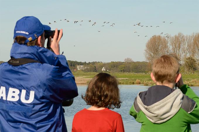 Vogelbeobachtung in der Wedeler Marsch - Foto: NABU/Guido Rottmann