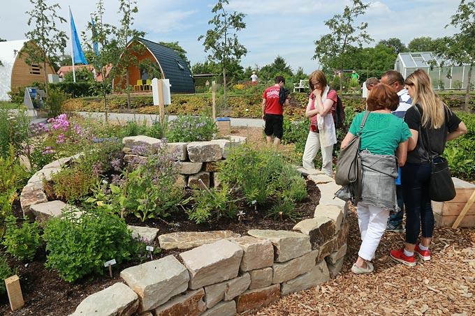 Prächtig Naturnah gärtnern: So geht es - 10 NABU-Tipps @DP_59