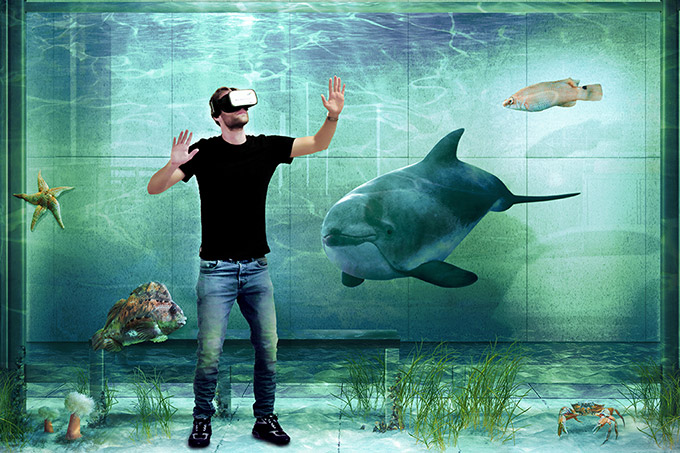 OstseeLIFE Key Visual - Taucher mit VR-Brille - Grafik: NABU/bernstein