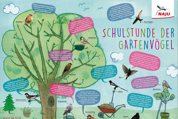 """Das Poster für die """"Schulstunde der Wintervögel"""" ist für einen Euro im NABU-Shop erhältlich."""