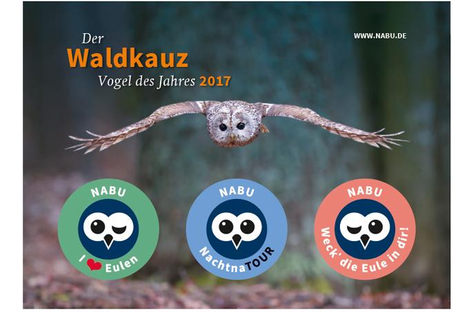 Waldkauz-Postkarte mit Aufklebern - NABU