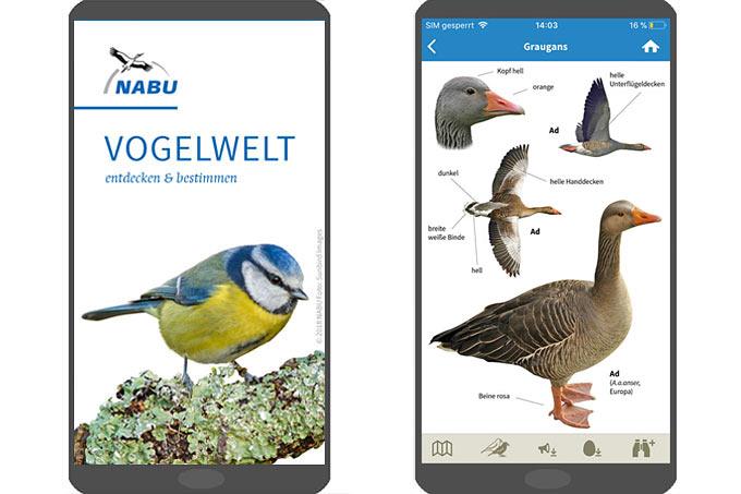 """NABU-App """"Vogelwelt"""""""