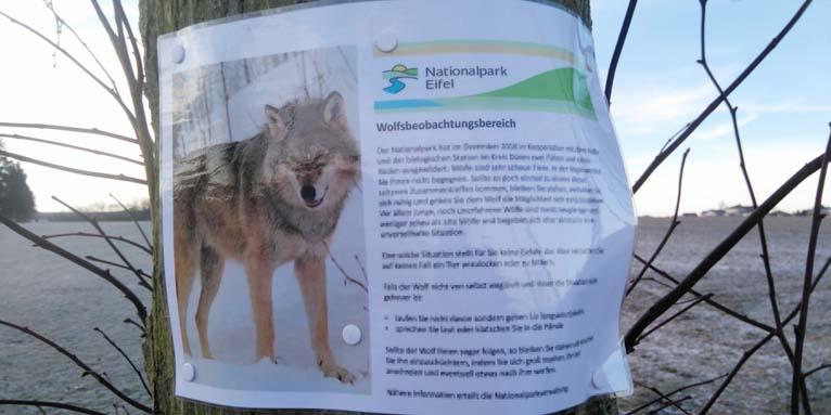 Nabu Willkommen Wolf