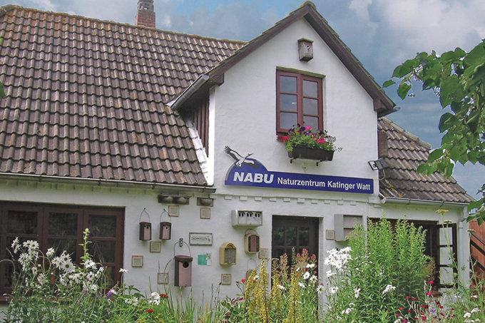 Katinger Watt