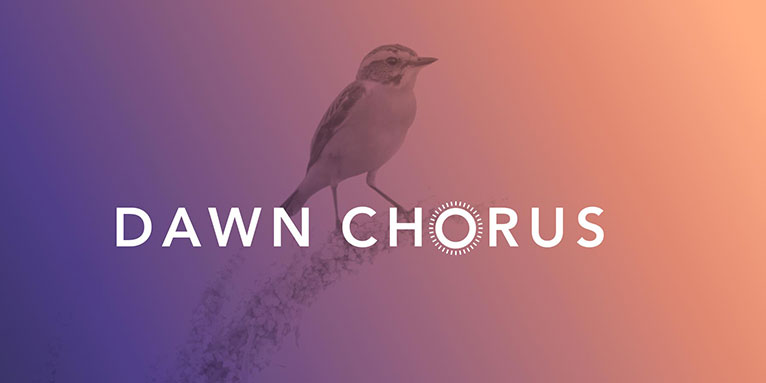 Citizen-Science & Kunstprojekt Dawn Chorus