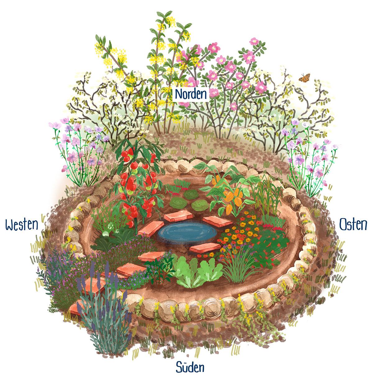 15+ Ein Kraterbeet für den Klima Garten   NABU Fotos