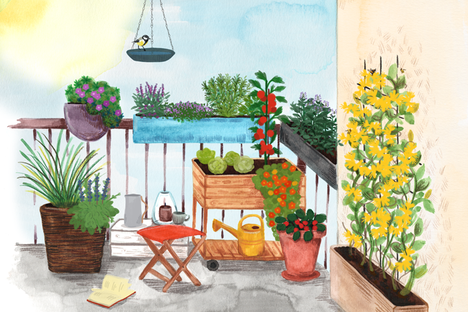Garten Balkon Naturnah Nabu