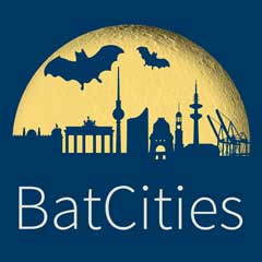 BatCities Label