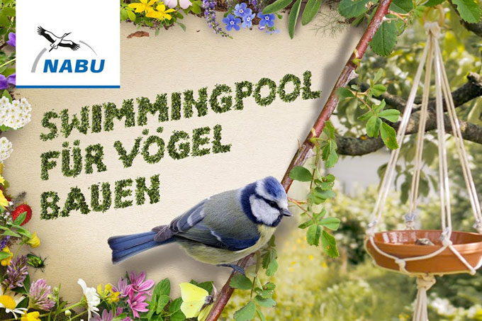 Screenshot DIY-Video Anleitung Vogelbad