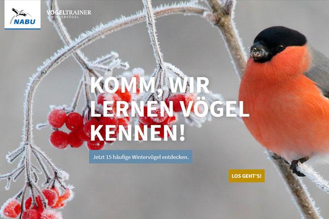 Interaktive Infos und abwechslungsreiche Quizfragen - Das steckt im neuen NABU-Vogeltrainer (www.vogeltrainer.de)