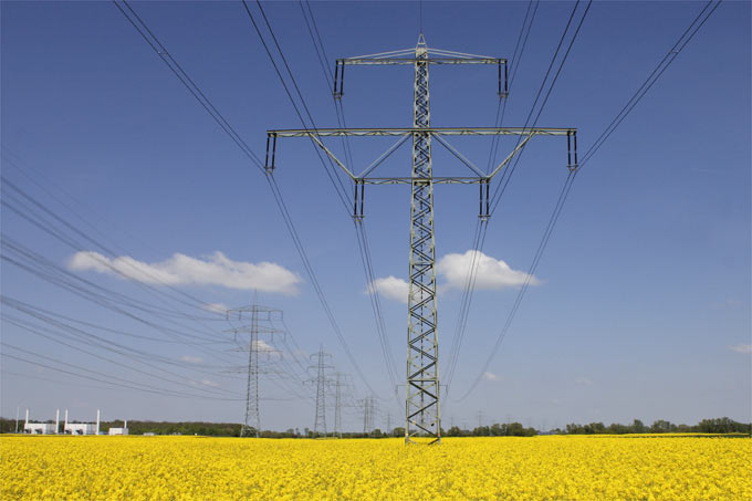 Neue Stromnetze und Naturschutz